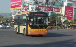开平602路公交车路线