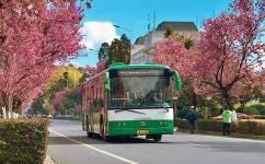 昆明183路公交车路线