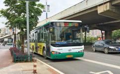 昆明31路公交车路线