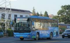 连云港29路公交车路线