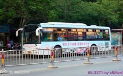 洛阳K65路公交车路线