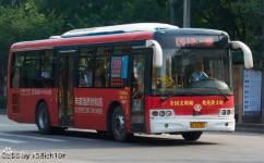 洛阳61/K61路公交车路线