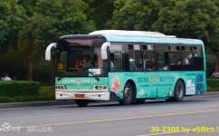洛阳K39路公交车路线