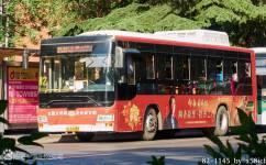 洛阳82/K82路公交车路线