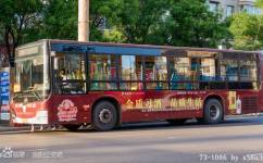 洛阳73路公交车路线