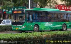 洛阳51/K51路公交车路线