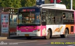 洛阳36路(停运)公交车路线
