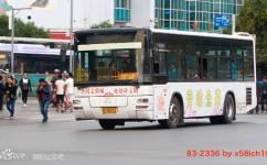 洛阳83/K83路公交车路线