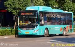 洛阳三十一路备份公交车路线