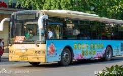 洛阳K167路公交车路线