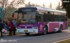 洛阳27路李家营专线(停运)公交车路线