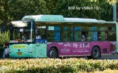 洛阳602路公交车路线