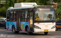洛阳79路(停运)公交车路线