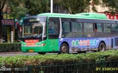 洛阳J301路公交车路线