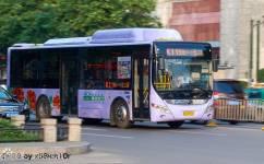 洛阳11/K11路公交车路线