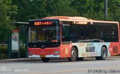 洛阳K37路公交车路线