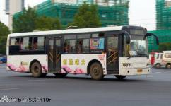 洛阳38路贠庄专线公交车路线