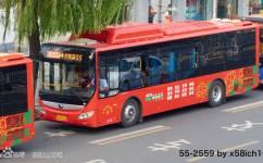 洛阳K55路公交车路线