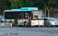 洛阳15/K15路公交车路线