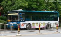 洛阳伊滨区专线公交车路线