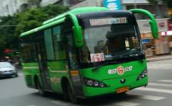 茂名电白6路公交车路线