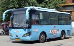 茂名5路公交车路线