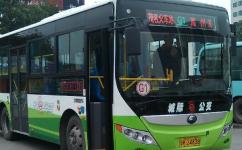 茂名G1路公交车路线