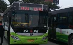 茂名H1路公交车路线