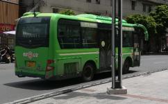 茂名电白2路公交车路线