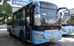 茂名1路公交车路线