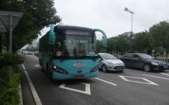 茂名311路公交车路线
