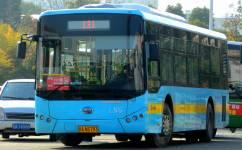 南昌131C路短班[联圩]公交车路线