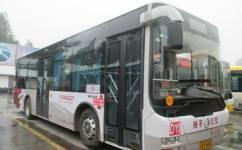 南京D10路公交车路线