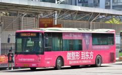 南宁43路公交车路线