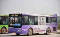 南宁D17路(常态化开行)公交车路线