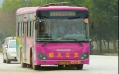 南宁805路公交车路线