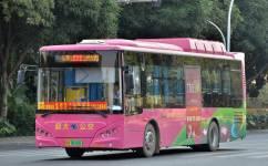 南宁808路公交车路线