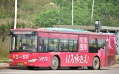 南宁W19路公交车路线