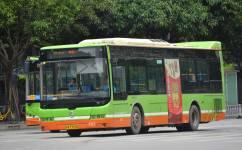 南宁D9路公交车路线