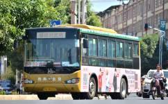 南宁武鸣10路(武鸣-锣圩 班线)公交车路线