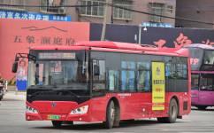 南宁65路公交车路线