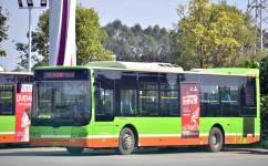 南宁D10路公交车路线