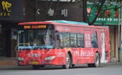 南宁602路公交车路线