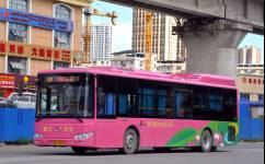南宁803路公交车路线