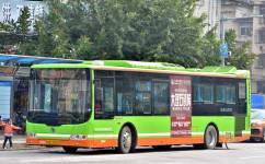 南宁20路公交车路线