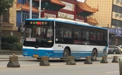 宁乡N301路A线公交车路线