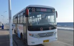 齐齐哈尔依安5路公交车路线