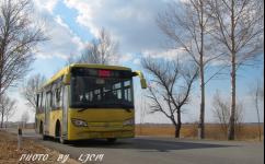 齐齐哈尔306路公交车路线