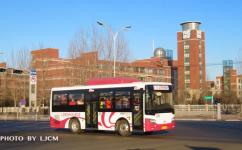 齐齐哈尔33路公交车路线