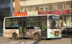 齐齐哈尔28路公交车路线